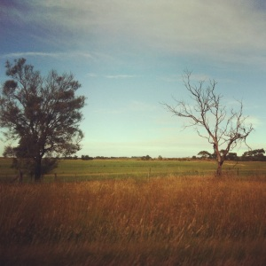on the road to meredith